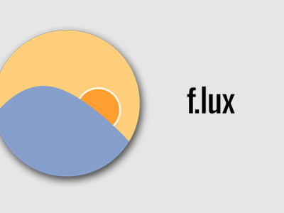 Flux for Web