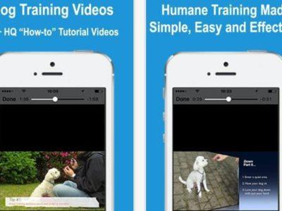 DogTraining App for iOS