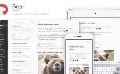 Bear for iOS