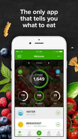 Mealviser for iPhone